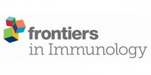 """""""Cerberus"""" T Cells: A Glucocorticoid-Resistant, Multi-Pathogen Specific T Cell Product to Fight Infections in Severely Immunocompromised Patients"""